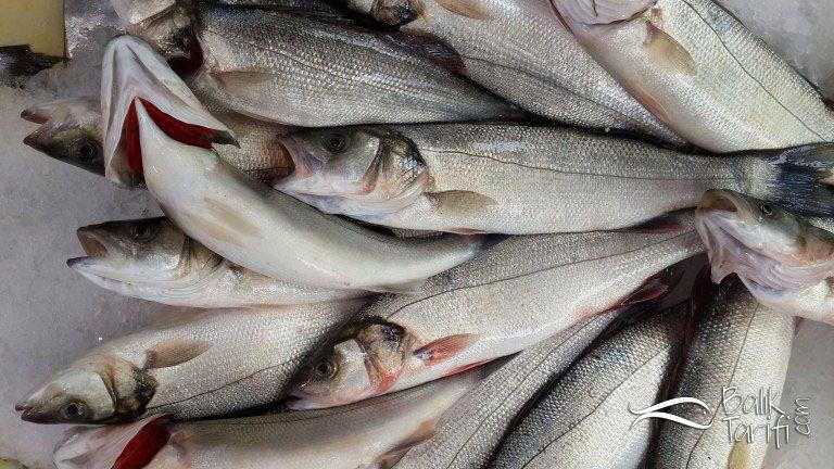 Taze balık nasıl anlaşılır? Taze ve bayat balık arasındaki farklar