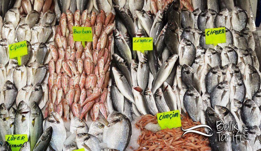 Besin Değeri Tablosuna Göre Hangi Balık?